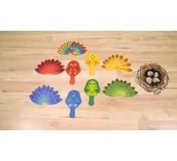 Le matériel du jeu de société Cocorito