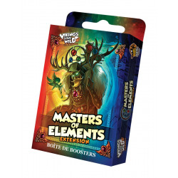 VIKINGS GONE WILD - MASTERS OF ELEMENTS - BOOSTER